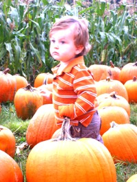 Pumpkin_patch2